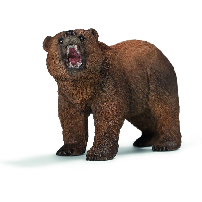 Пожеланиями, картинки медведь для детей на прозрачном фоне
