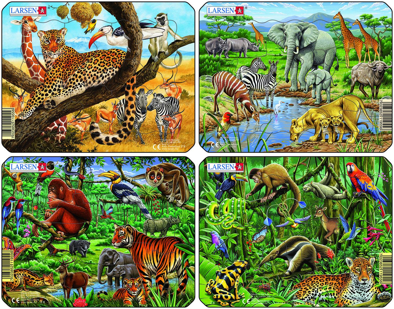 Животные джунглей картинки для детей с названиями