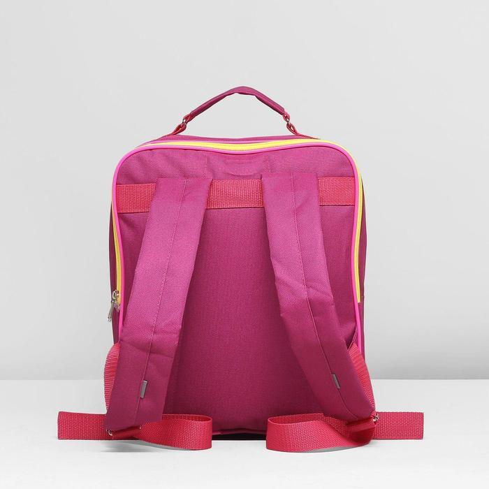 12b63ba06a39 Рюкзак школьный на молнии Luris 2 отдела, 2 наружных кармана, цвет фуксия
