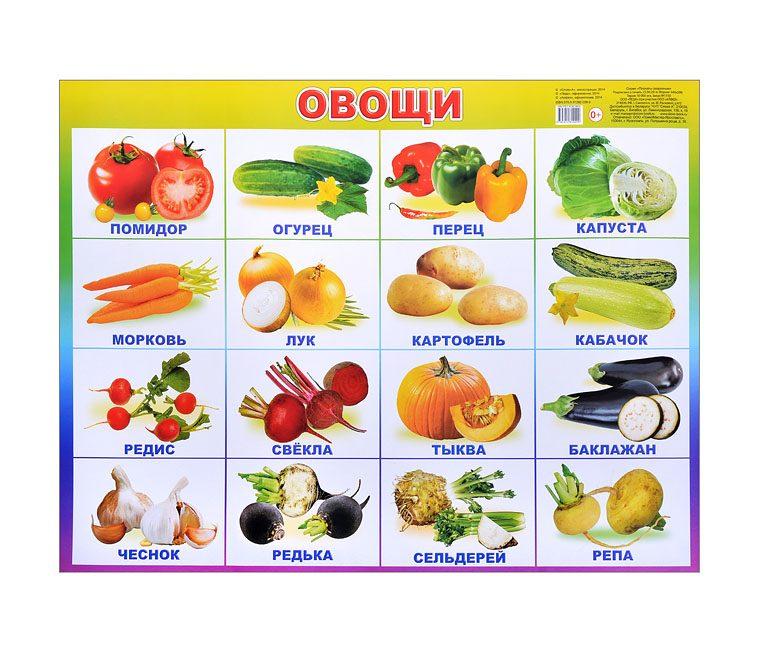 концерты список всех овощей с фото зависимости того, какое